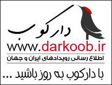 دارکوب
